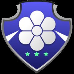ECI Flag