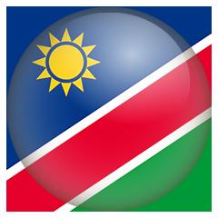 UGA Flag